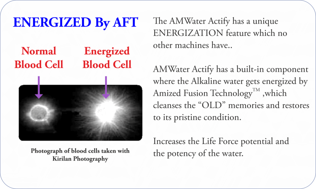 Amized Fusion technology